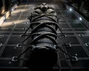 la momia película